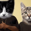 """""""Run The Jewels 2"""" To Be Remixed Using Cat Sounds? [Update: Yes, """"Meow The Jewels"""" Is Happening]"""
