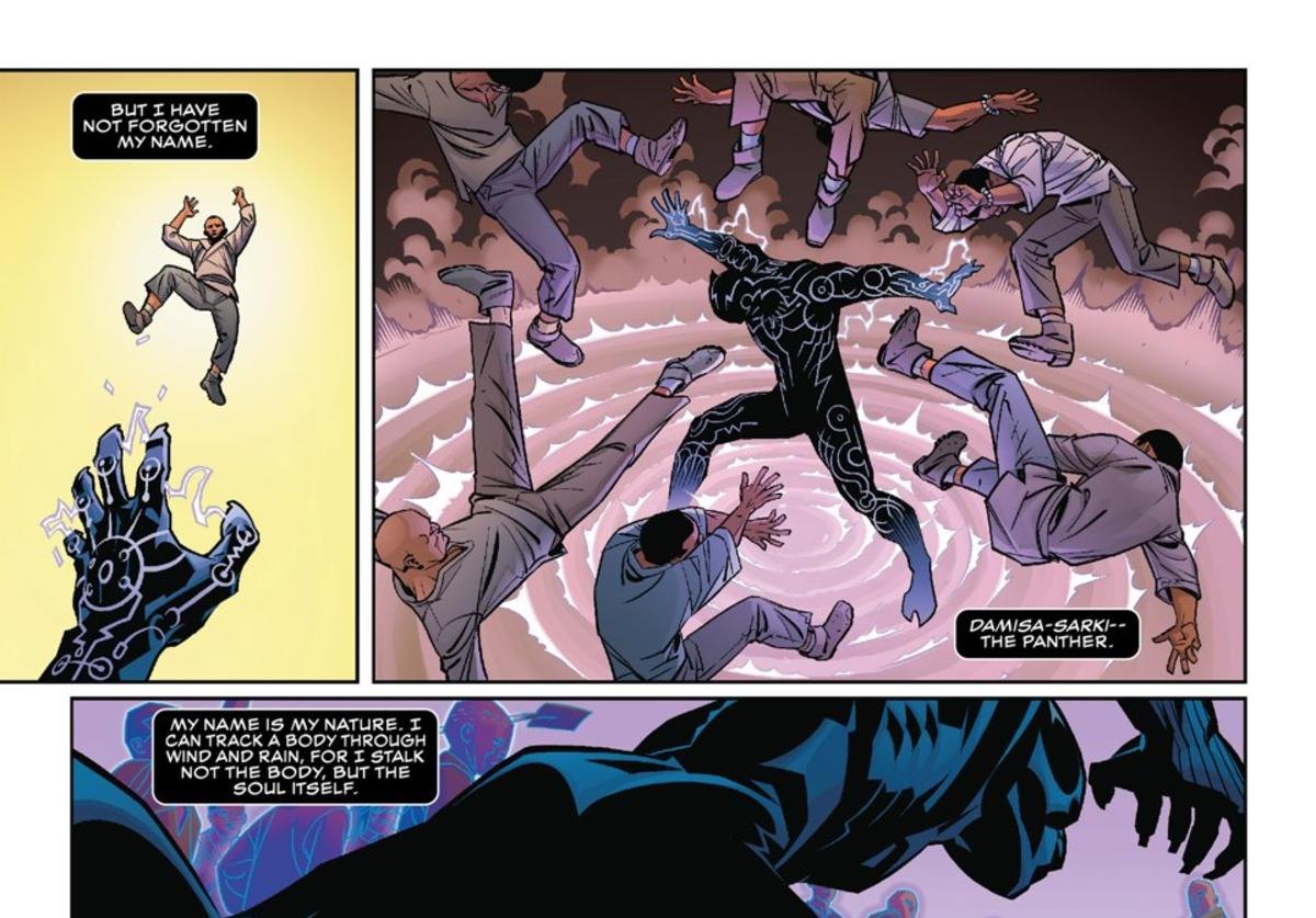 "Panels excerpted from ""Black Panther #1"""