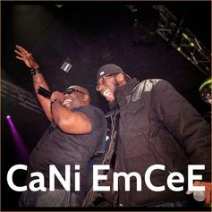 Bumpy Knuckles - CaNi EmCeE? Feat. DJ Hollywood & DJ Wayne Ski
