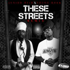 Junior Reid - These Streets (Remix) Feat. Young Rook