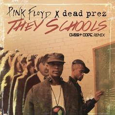 Dead Prez - They Schools (CHEATCODE Remix)