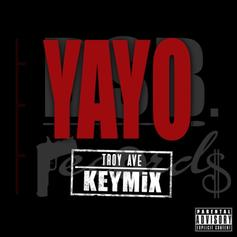 Troy Ave - Yayo (Remix)