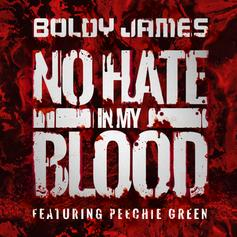 Boldy James - No Hate In My Blood Feat. Peechie Green