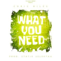 Chris Miles - What You Need