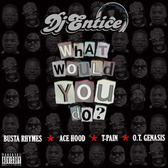 DJ Entice - What Would You Do? Feat. Busta Rhymes, O.T. Genasis, T-Pain & Ace Hood
