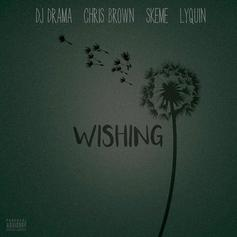 DJ Drama - Wishing Feat. Chris Brown, Skeme & LyQuin