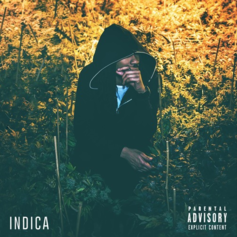 Willy J Peso - Indica