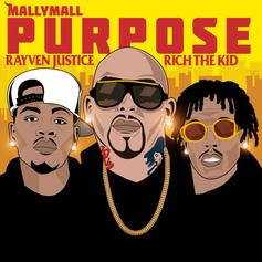 Mally Mall - Purpose Feat. Rich The Kid & Rayven Justice