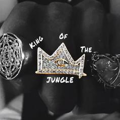 "Joey Bada$$ Reps Brooklyn To The Fullest On New Song ""King Of The Jungle"""