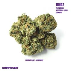 """Westside Gunn & Conway Team Up For New Alchemist-Produced Song """"Budz"""""""