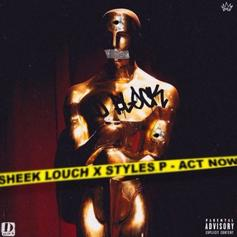 """Sheek Louch & Styles P Team Up On """"Act Now"""""""