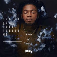 """Listen To Skooly's """"Don't You Ever Forget Me 3"""" Project"""