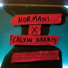 "Normani & Calvin Harris Team Up On ""Slow Down"""