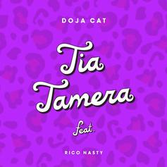 "Doja Cat & Rico Nasty Collaborate On ""Tia Tamera"""