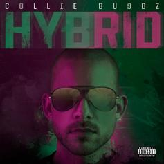 "Collie Buddz Recruits Russ,Tech N9ne & More On ""Hybrid"" Album"