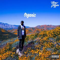"Casey Veggies Pours One Out For Mac Miller & Nipsey Hussle On ""Organic"""