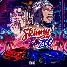 """Stream SkinnyFromThe9 & Fetty Wap's Joint EP """"Skinny Wit The Zoo"""""""