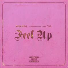 "YG Joins Pia Mia On Mary J. Blige Flip ""Feel Up"""