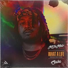 """MFnMelo Drops """"What A Life"""" Featuring Saba"""
