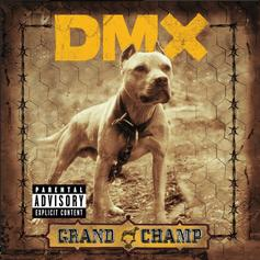 """DMX Linked With 50 Cent & Styles P On Gangsta """"Shot Down"""""""
