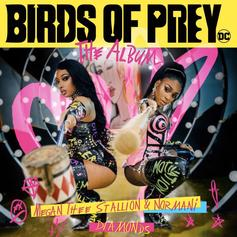 "Megan Thee Stallion & Normani Form The Ultimate Girl Power Duo On ""Diamonds"" For ""Birds Of Prey"" Soundtrack"