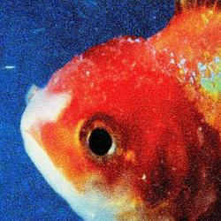 Big Fish Theory [Album Stream]