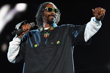 "Projections For First Week Sales Of Snoop Dogg's ""Reincarnated"" & Will.i.am's ""#willpower"""