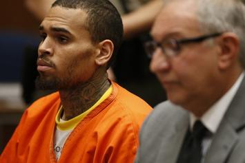 Chris Brown Released From Jail