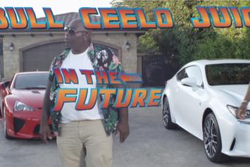 "DJ Felli Fel Feat. Pitbull, Juicy J & Cee-Lo Green ""Have Some Fun"" Video"