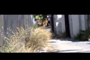 "Freeway & The Jacka Feat. Freddie Gibbs & Jynx ""Cherry Pie"" Video"