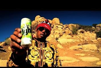 "Master P Feat. Howie T ""It's A Jungle Out Here"" Video"