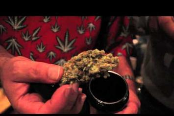"P.A.P.I. (NORE) Feat. Styles P, Ghostface Killah ""Visit The ""Cannabis Cup"" In Amsterdam"" Video"