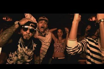 "Swizz Beatz Feat. Chris Brown and Ludacris ""Everyday Birthday"" Video"