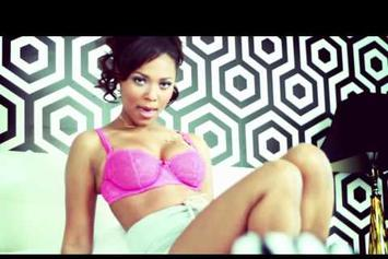 "Mr. Vegas Feat. Teairra Mari & Gyptian ""Pum Pum Shorts (Remix) / Something About U Turns Me On"" Video"