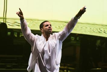 Drake's OVO Fest Will Not Receive Government Funding