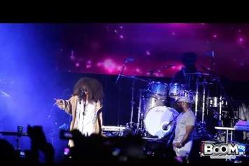 Watch Erykah Badu Bring Out The LOX And YG At The Roots Picnic