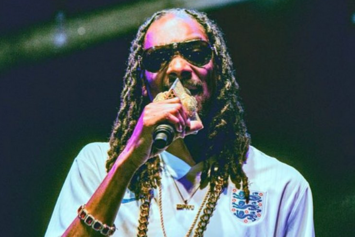 Snoop Dogg Arrested In Sweden, Suspects Racial Profiling