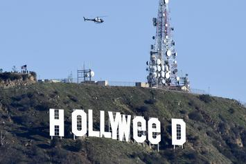 """The """"Hollyweed"""" Prankster Turns Himself Into Police"""