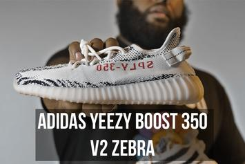 Adidas Yeezy Boost 350 V2 Zebra - HNHH Kicks Review