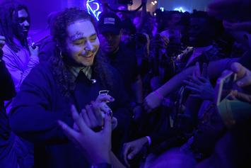 "Post Malone Apologizes For Delay Of His Debut Album ""Stoney"""