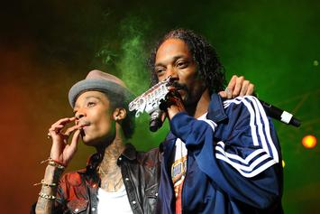 17 Injured Concertgoers Sue Snoop Dogg & Wiz Khalifa Over Railing Collapse
