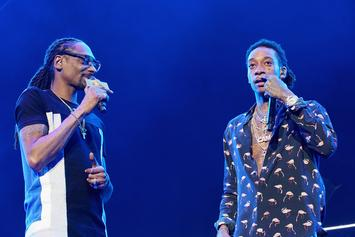 Railing Collapses At Snoop Dogg x Wiz Khalifa Concert Injuring 10-15
