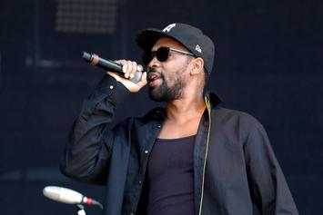 RZA Has Tried To Buy Back Martin Shkreli's Wu-Tang Album