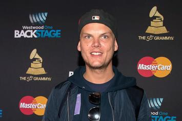 Avicii's Girlfriend Issues Statement On Private Relationship