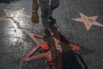 Donald Trump's Hollywood Walk Of Fame Star Destroyed With Pickaxe