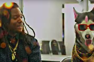 """Rich The Kid Joins Pimpton For A Cage Match In """"Boppers"""" Video"""