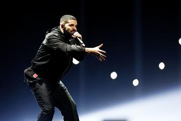 "Drake Stops Mid-Song To Address A Fan's ""BBW"" Sign During London Show"