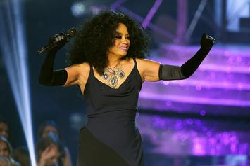 Diana Ross' Accusations Against TSA Investigated, No Wrongdoing Found: Report