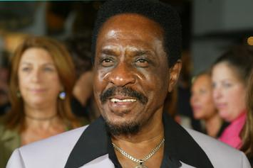 Ike Turner's Daughter Denies That Her Father Ever Raped Tina Turner