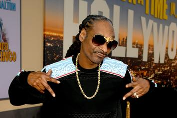 "Snoop Dogg Stars As Cousin It In Animated ""The Addams Family"" Film"